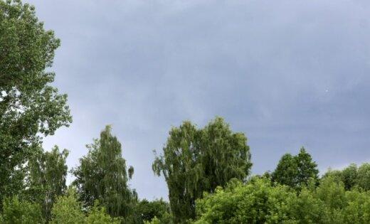 Синоптики обещают прохладные и дождливые выходные