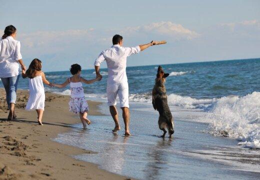 Исследование: люди ощущают себя счастливее у моря