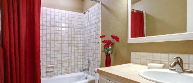 Lēmuma priekšā: ko izvēlēties – vannu vai dušu