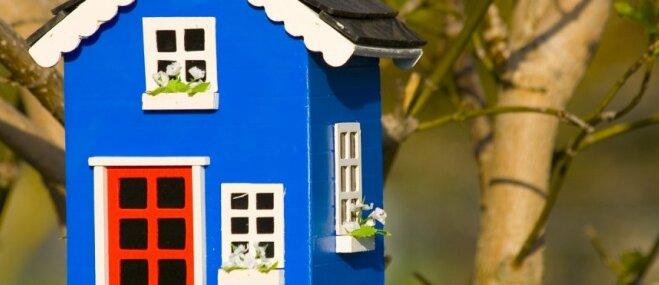 Senču gudrību izmantošana mūsdienās – permakultūra un filozofijas izpausmes māju būvniecībā