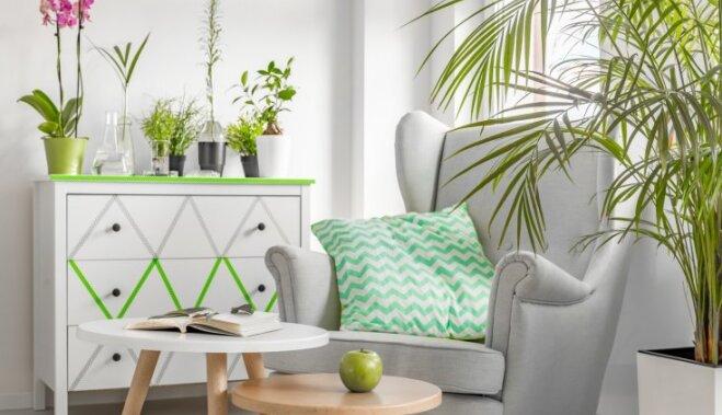 ФОТО: 10 способов, как можно использовать серый цвет в интерьере и он не будет унылым