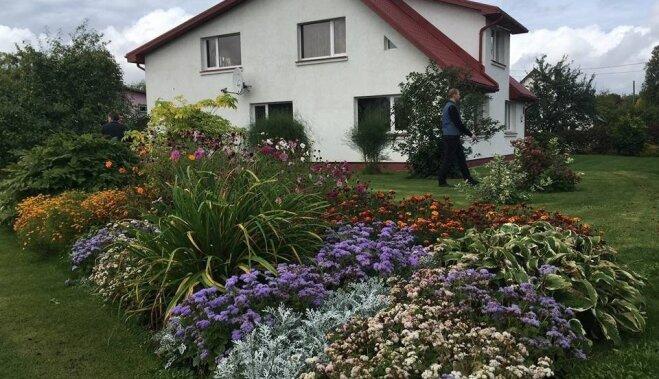 ФОТО. Как выглядят самые ухоженные сады Коценского края