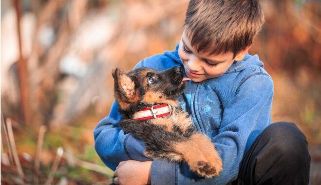 Собака и ребенок. 12 золотых правил для родителей