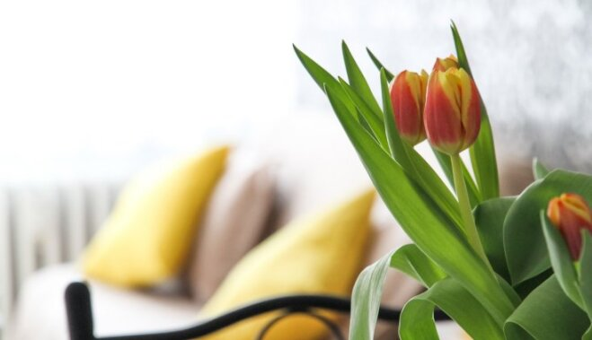 Поднимаем настроение. Как создать весенний интерьер?