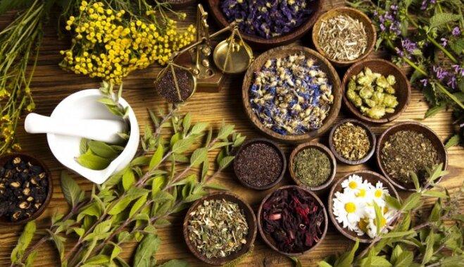 Какие травяные чаи и сборы снижают аппетит