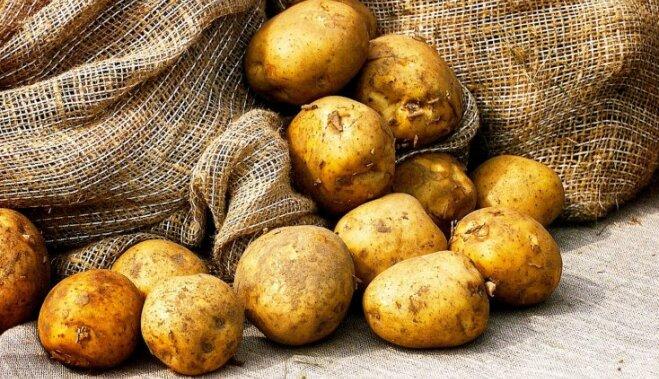ВИДЕОХИТРОСТЬ. Как почистить картошку за 10 секунд