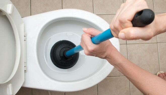Вредные советы: сливайте это в канализацию и ждите сантехников