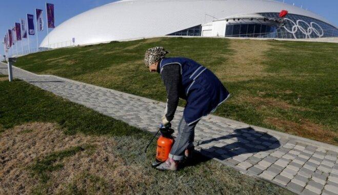 Sočos pie olimpiskās ledus halles krāso zālienu