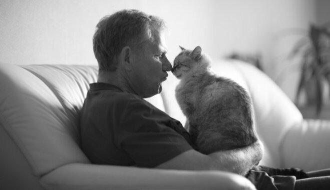 12 pazīmes, kas liecina – tavs kaķis tevi vienkārši dievina