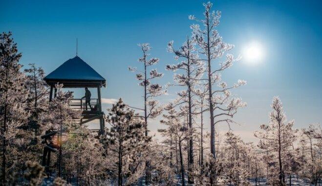 Skatu torņi Latvijā, no kuriem paveras brīnišķīga ainava