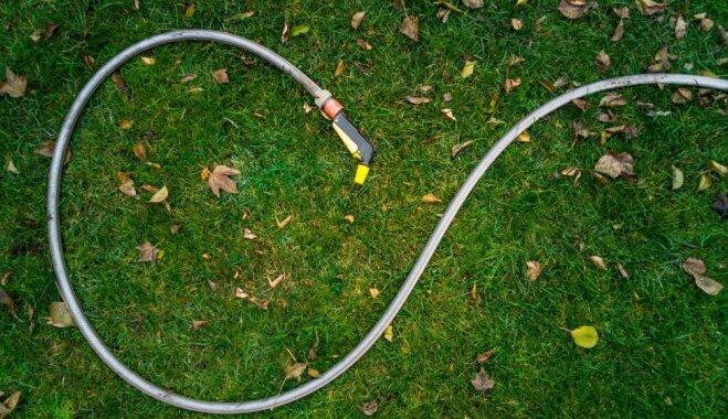 Rūpes par zālienu lapkriša sezonā – pļaušana, laistīšana un mēslošana