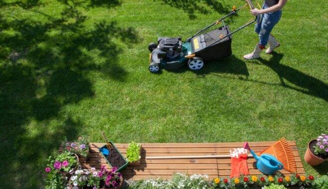 Лунный календарь для садовых работ на 2-8 июля 2018 года