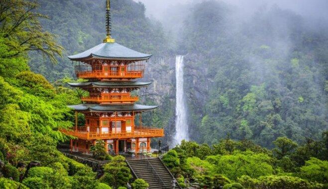 Сакуры, цветущие поля и горы: 10 причин оказаться в Японии, даже если вы об этом раньше не задумывались