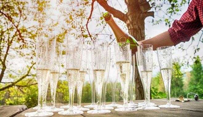 Kā no bērzu sulas mājas apstākļos pagatavot 'šampanieti': septiņas dzirkstošas receptes