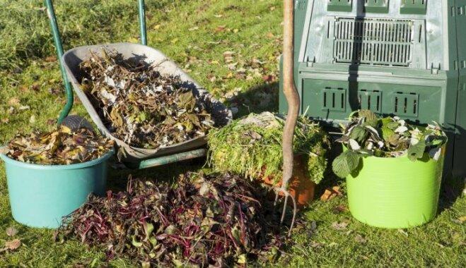 Kas darāms dārzā un pagalmā līdz 15. oktobrim