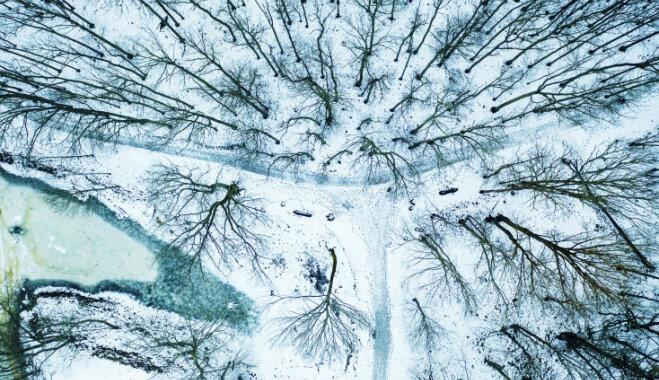 Волшебные ФОТО: Руины Кокнесского замка холодной зимой