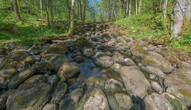 Velna grāvis un klēpis Vidzemē – neparasti un ainaviski akmeņu krāvumi netālu no Ērgļiem