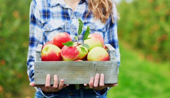 Skolas direktore: bērni nav āboli, kas nogatavojas kokos