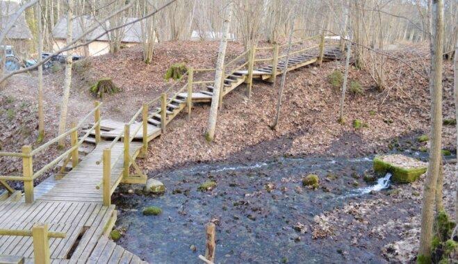 ФОТО: Бирюзовый пруд и 10 источников в одном месте. Межмуйжский природный заказник
