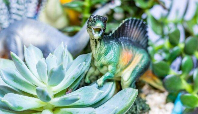 Dinozauru ēras jaunais sākums: Dzīve starp augiem un košumkrūmiem
