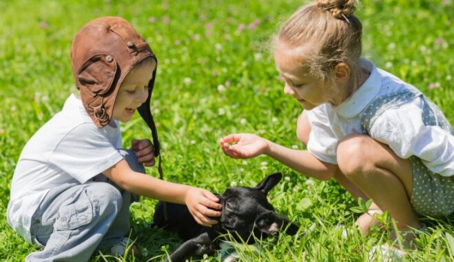 Septiņas ieteicamākās suņu šķirnes ģimenēm ar bērniem