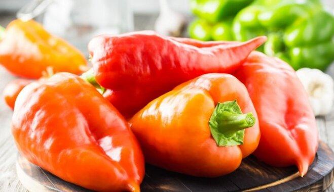 Vienkāršais paprikas lečo ar tomātu pastu