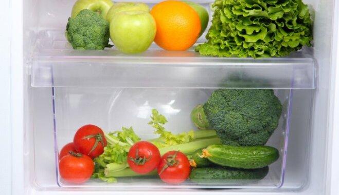 Pieci ieteikumi, kas palīdzēs jauna ledusskapja iegādē