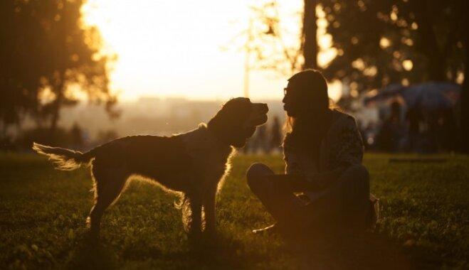 15 tikai suņu saimniekiem saprotamas lietas un emocijas