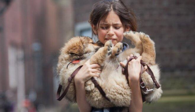 'Sliktākā diena mūžā': kādu ietekmi uz bērnu atstāj mājdzīvnieku nāve