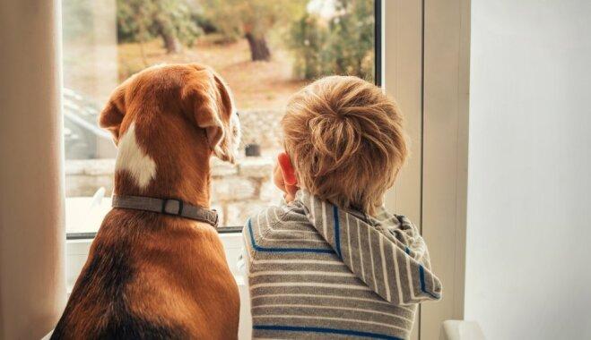 Пригодится каждому: чего нельзя делать в гостях, где есть собака