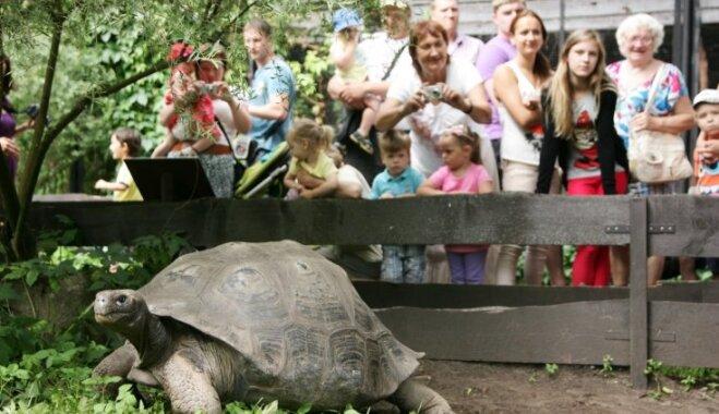 Sociālos tīklus saviļņo bērna neielaišana zoo ar riteni; zvēru dārzs pateicas par tēmas aktualizēšanu
