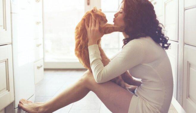 Ikdienišķi iemesli, kāpēc kaķi ir līdzīgi sievietēm