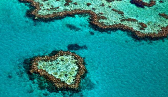 Пристанища Амура: 9 самых романтических озер и островов в форме сердца