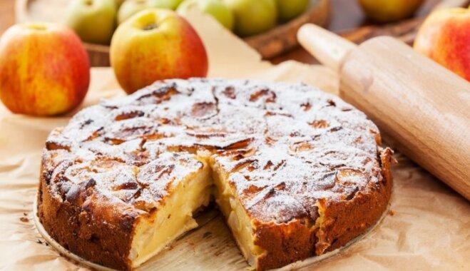 Какой можно испечь пирог быстро и вкусно