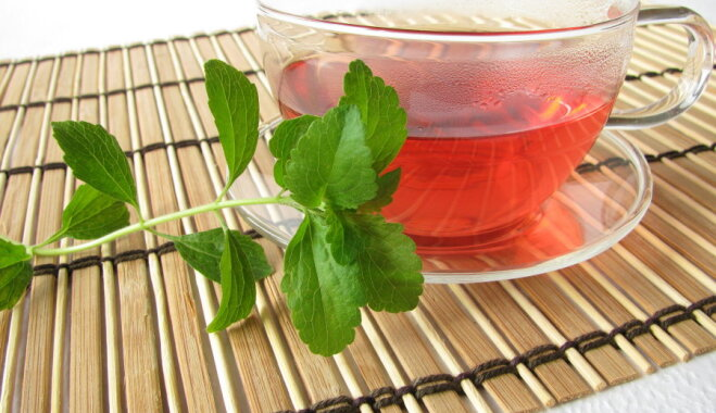Тайны идеального чая: температура воды и время заварки