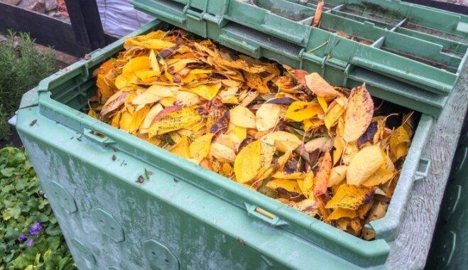 Ierīkošana, izmantošana un sagatavošana ziemai: par un ap vērtīgo kompostu