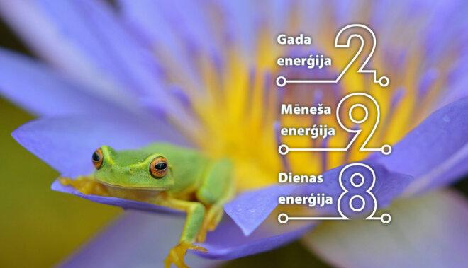 8. jūlija numeroloģiskais dienas fons