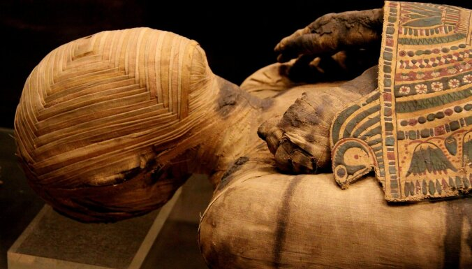 Не плюй в колодец! Египтолог Виктор Солкин про ДНК египтян, шарлатанство и рижский шедевр