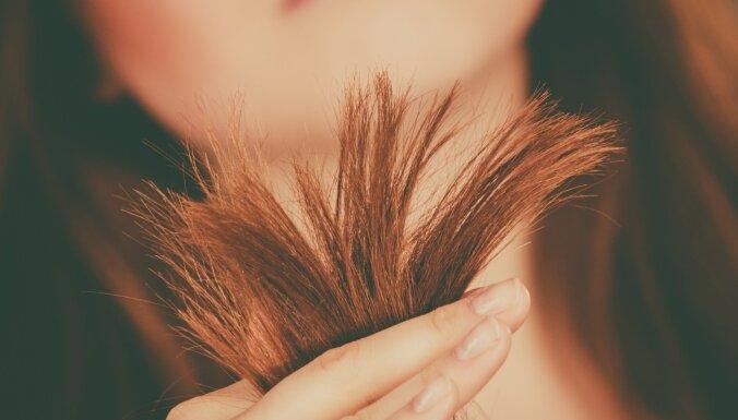 Как сделать волос толще и гуще: рабочие способы