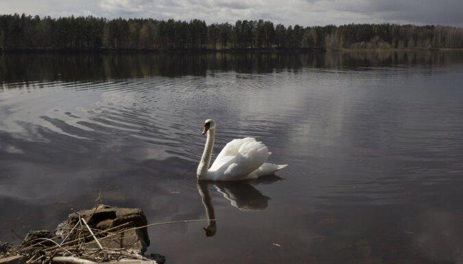 В Латвии в четверг утонул один человек