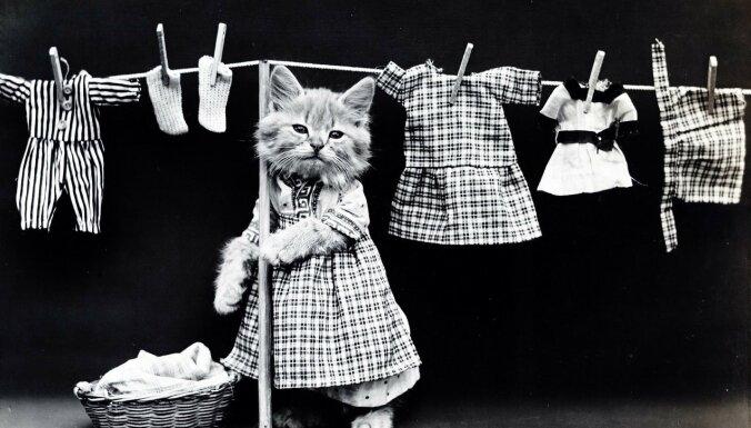 Носить бабушкины вещи на самом деле круто. Что делать со старой одеждой?