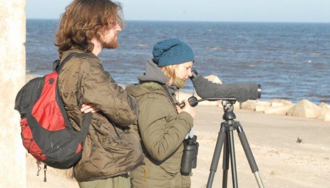 Lībiešiem pa pēdām: pārgājiena maršruts gar jūras krastu Slīteres nacionālajā parkā