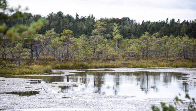 Maz pieejamā Teiču purva burvība rudenī: aicina velobraucienā uz Siksalu