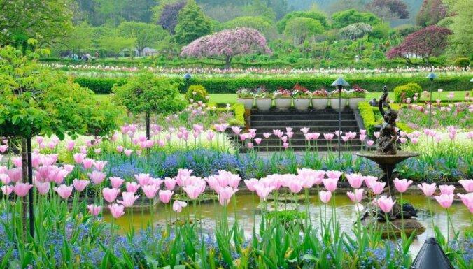 11 apburoši pasaules dārzi, no kuriem smelties iedvesmu