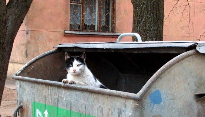 Газета: вывоз мусора в Латвии будет дорожать