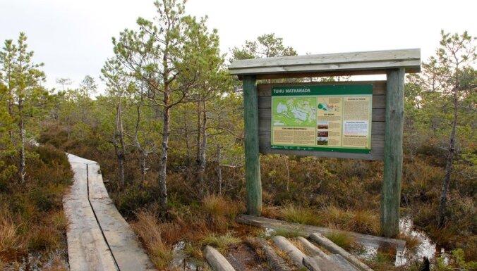 А мы идем на север: Пять интересных природных троп в Эстонии