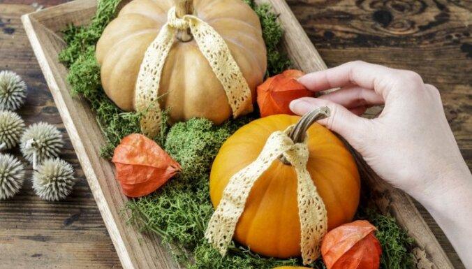 ФОТО. Своими руками: как создать осенний декор в доме, даже если вы не поклонник Хэллоуина