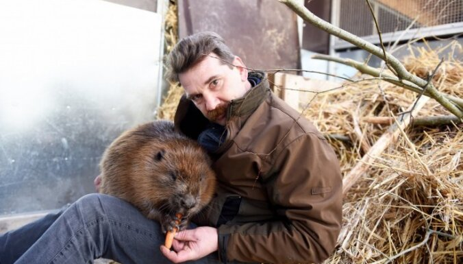 Rīgas dome par 150 tūkstošiem eiro palielinās zoodārza dotāciju