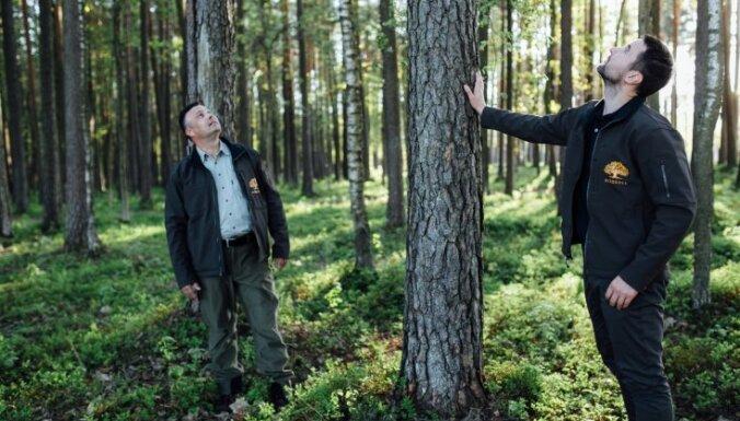 Skandināvijas standartiem atbilstoša mežu apsaimniekošana Latvijā