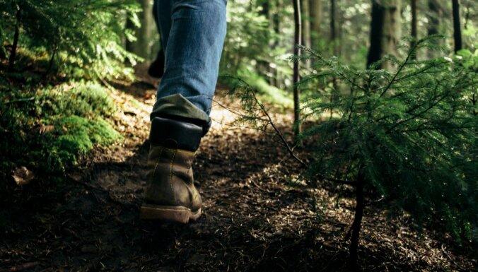 Meža pelde – efektīvs veids, kā pārvarēt ikdienas stresu